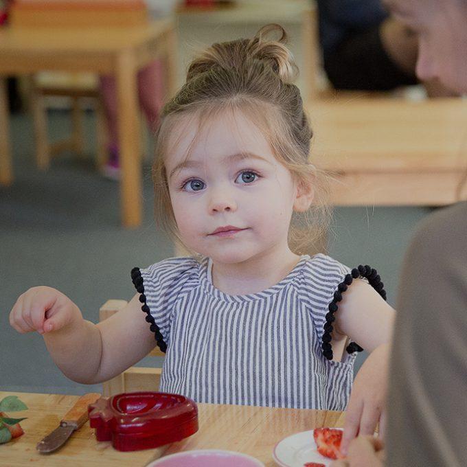 Beehive Montessori Playgroup